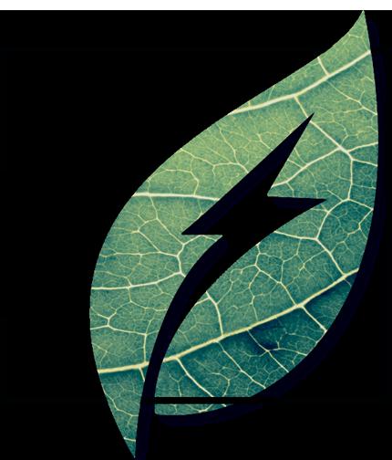 We are Intergaz Energy Solutions Ltd